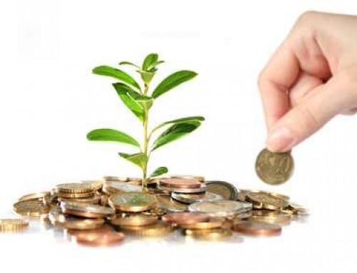 Nachhaltige Geldanlagen und auf was du achten solltest!